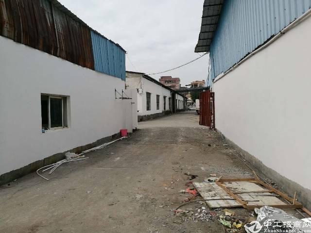 万江小独院单一层厂房1550平米办公室150平米,空地500