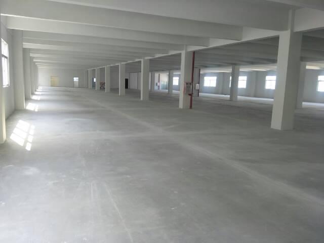 广州新塘全新独栋厂房8400平方招租可分租