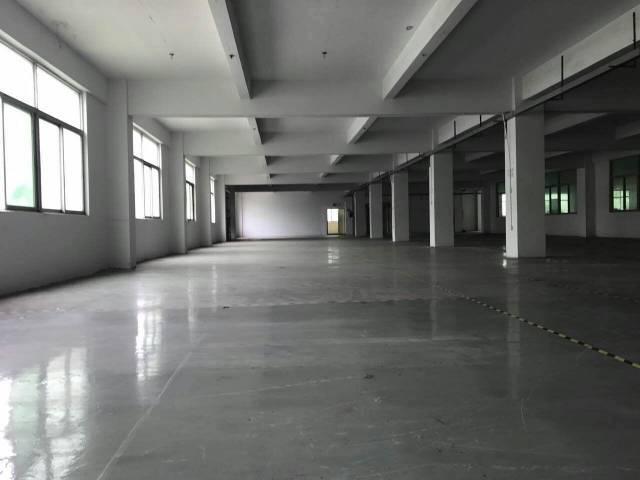 坪地标准楼上带地坪漆装修!