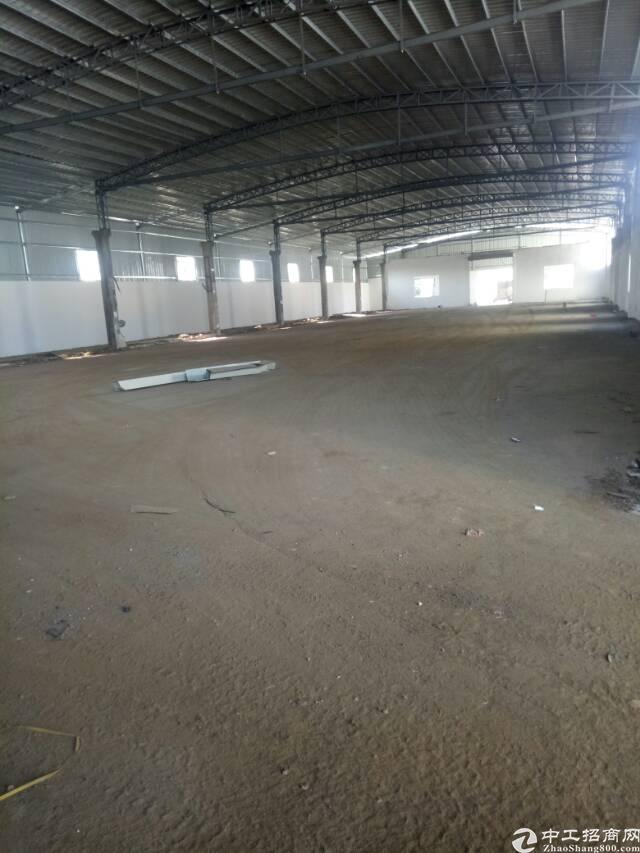 坪地全新钢构出租,滴水7米