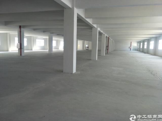 广州新塘全新独栋厂房8400平方招租可分租-图3