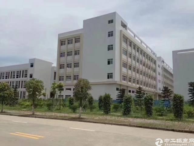 石岩红本高新园4栋厂房32000平方