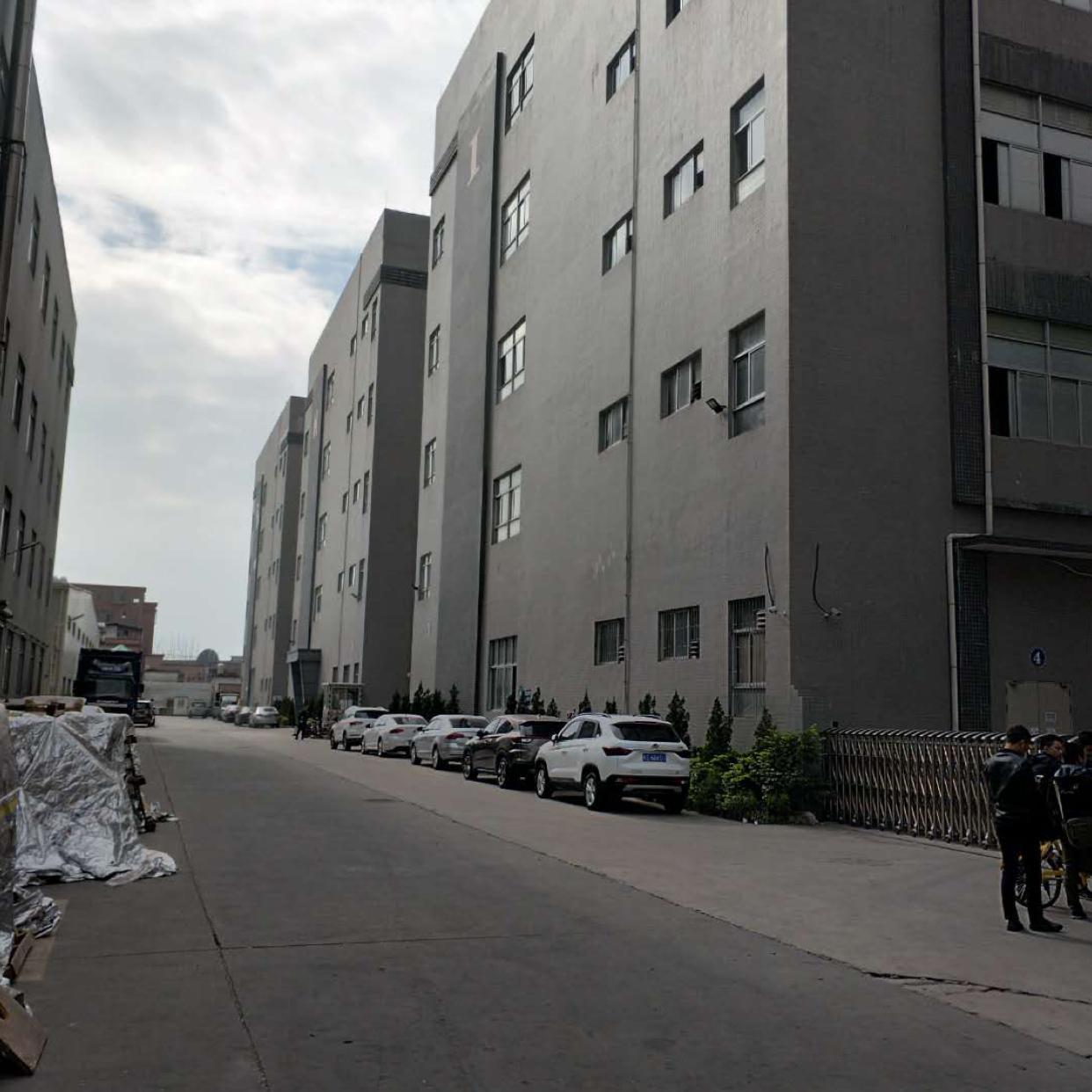 大岭山新塘村原房东厂房出租