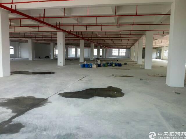 惠州惠阳红本独院厂房9800出租