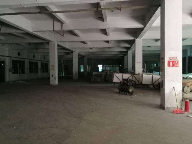 虎门镇独院厂房7500方宿舍2500方