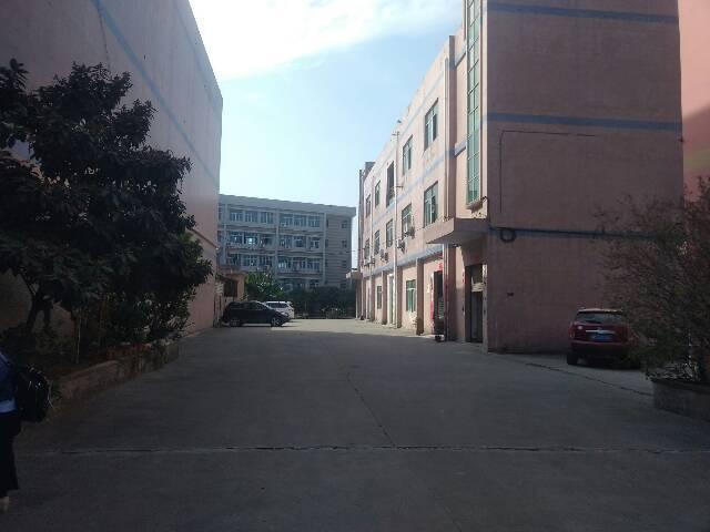 观澜环观南路山水田园旁独门独院厂房1250平米出租