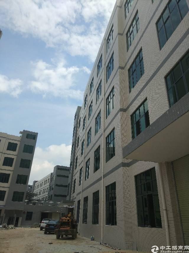 惠阳新圩塘吓国道边一楼868平米厂房出租