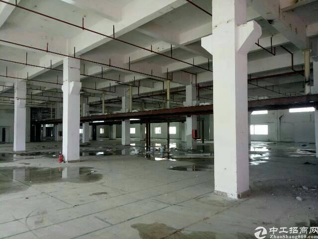 惠州惠阳镇隆原房东独院厂房9800平方招租可分租-图3