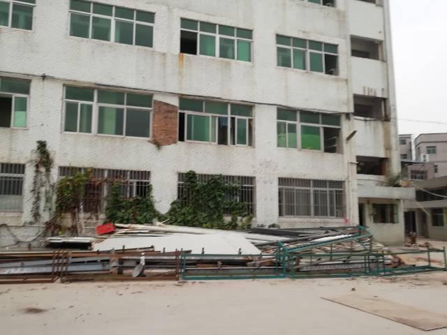 横岗六约新村厂房宿舍 8000平方一栋楼 价格27元整租