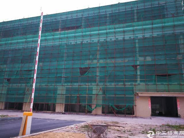 龙岗坂田独院空地超大厂房2.25万平方红本十年合同-图5