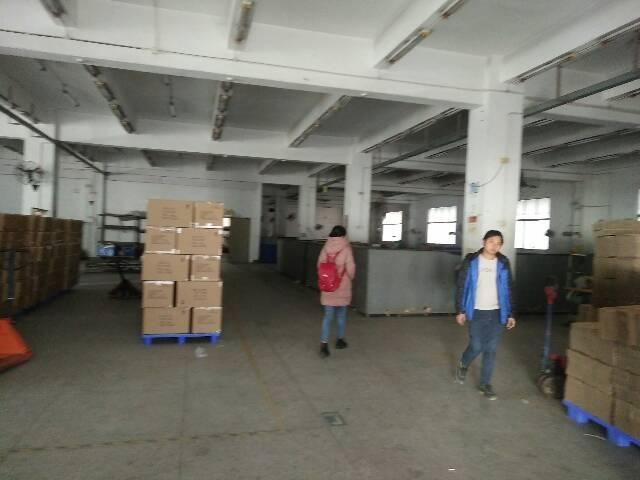 福永107国道边独院厂房12000平方招租-图4
