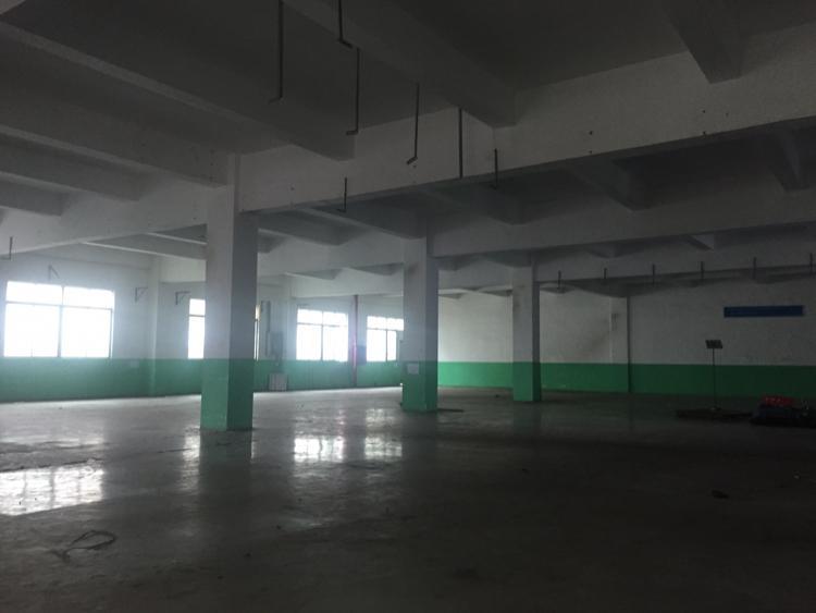 观澜有轨电车站旁新出原房东二楼带办公室豪华装修1180平