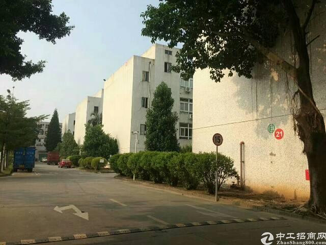 观澜福民小面积带装修标准厂房520平,园区停车位充足。