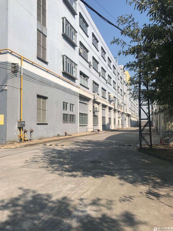 原房东单层面积4800平方花园式厂房出租