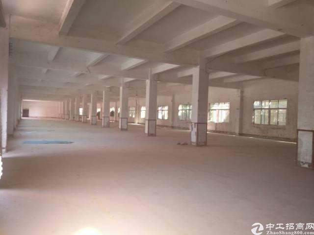 龙岗区宝龙工业区现空出三楼厂房3500平有电梯层高4米8
