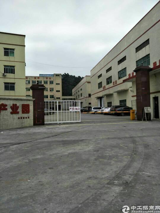 大岭山镇大岭村空出标准厂房四楼2000平方。