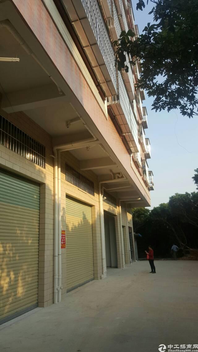 东莞塘厦林村一楼铺面800平方招租