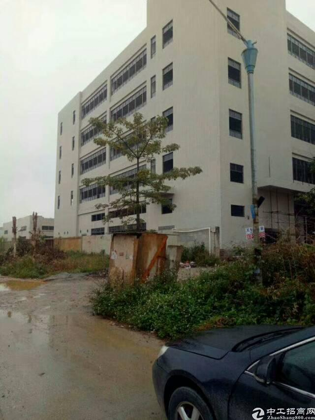 大朗镇花园式独院标准厂房火爆招租
