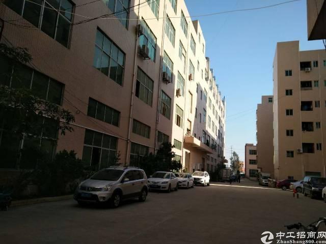 标准一楼2500平方带牛脚红本厂房出租