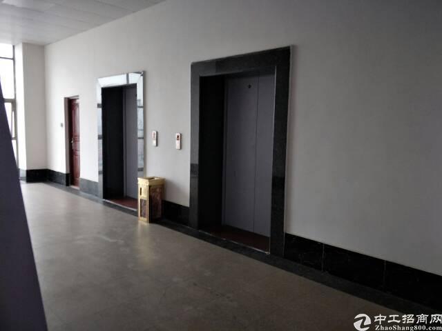 长安厦岗新出650平米精装修厂房