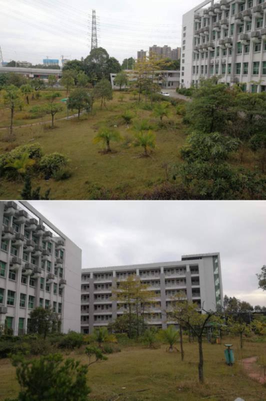 横沥镇占地 10亩建筑 12000㎡国有证厂房出售