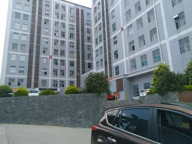 沙井新桥高速出入口二楼1300豪华装修