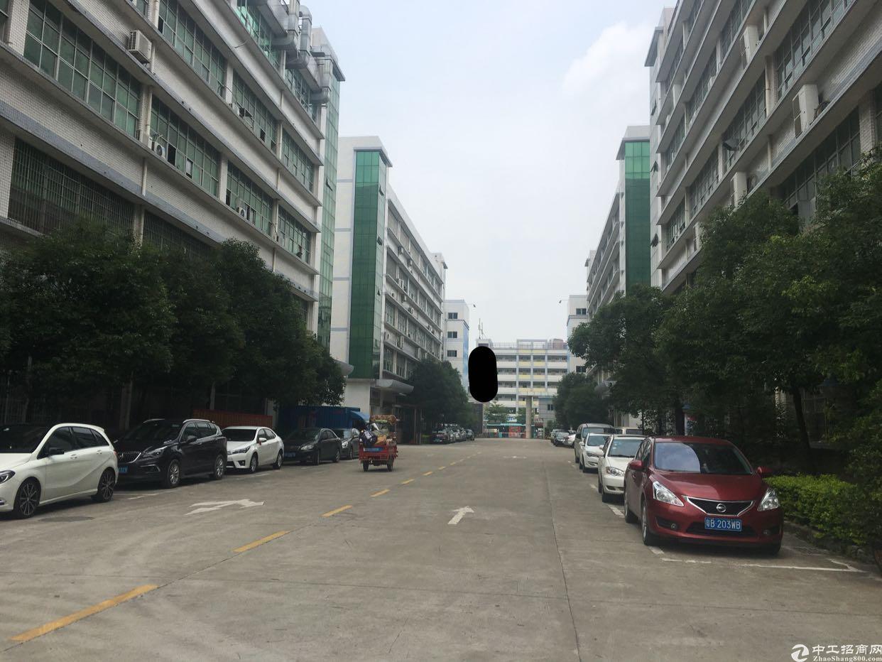 观澜原房东8000平独栋厂房火爆来袭