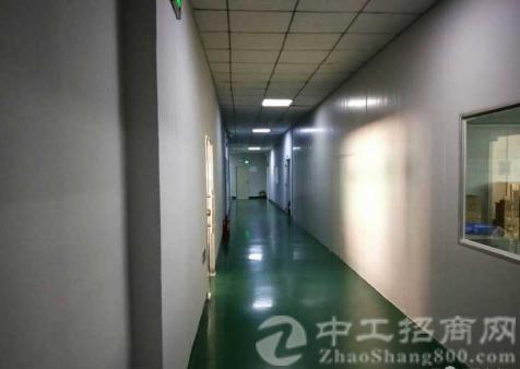 沙井南环路新出楼上500平米无尘车间厂房招租