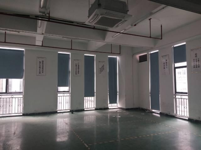 沙井新桥大型工业园内新出装修厂房出租1200平