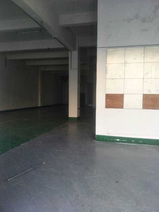 松岗新出一楼厂房560平米带装修出租