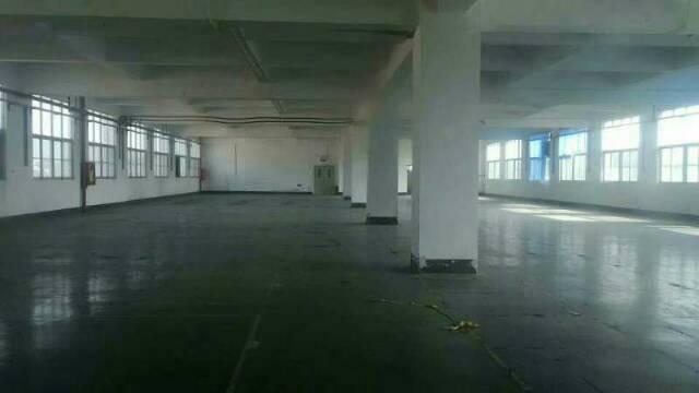 光明新出厂房3500平方近高速出入口