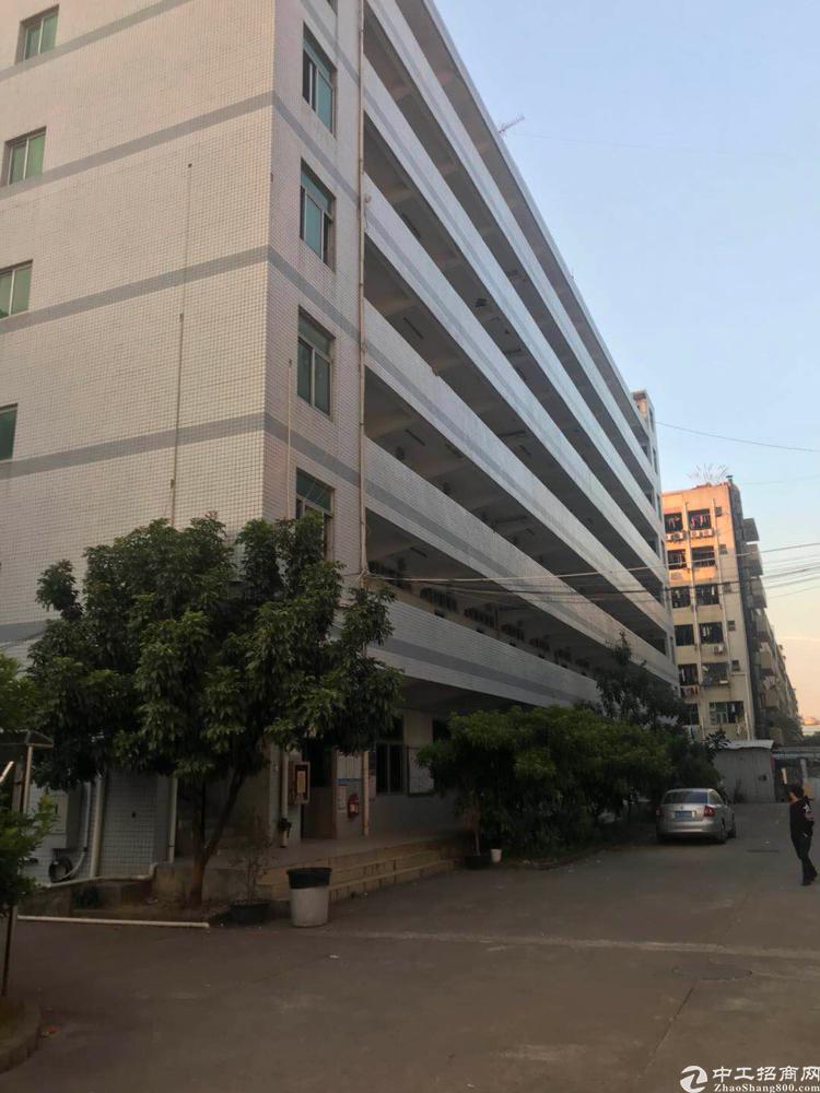 福永和平工业区宿舍该场房7000平方可以包住可以改公寓