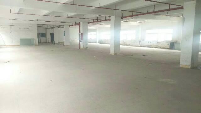 横岗深坑社区幼儿院旁独院厂房三层约4000平米厂房全面翻新