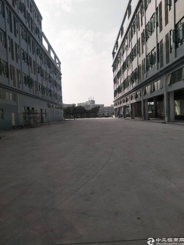 厚街镇独院厂房