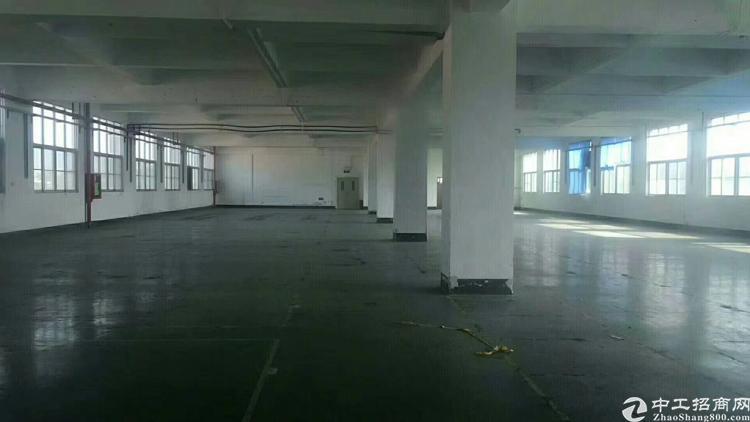 沙井高速路口整层厂房出租1600平