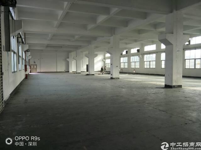松岗燕川新出两层独院4800平一楼6米高带精装修