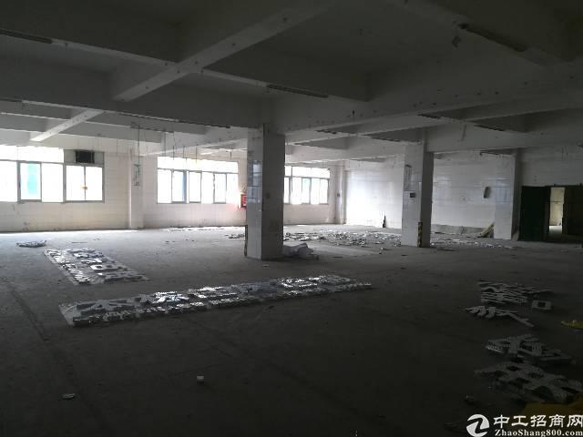 深圳 龙岗 北通道 厂房出租 可整可分租
