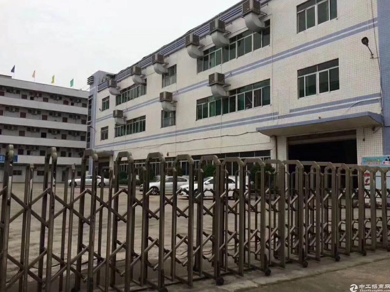 龙华大浪一楼1500平厂房出租,面积实在,高度6.5米