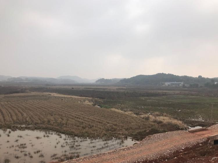 江苏南京国有工业用地50亩出售