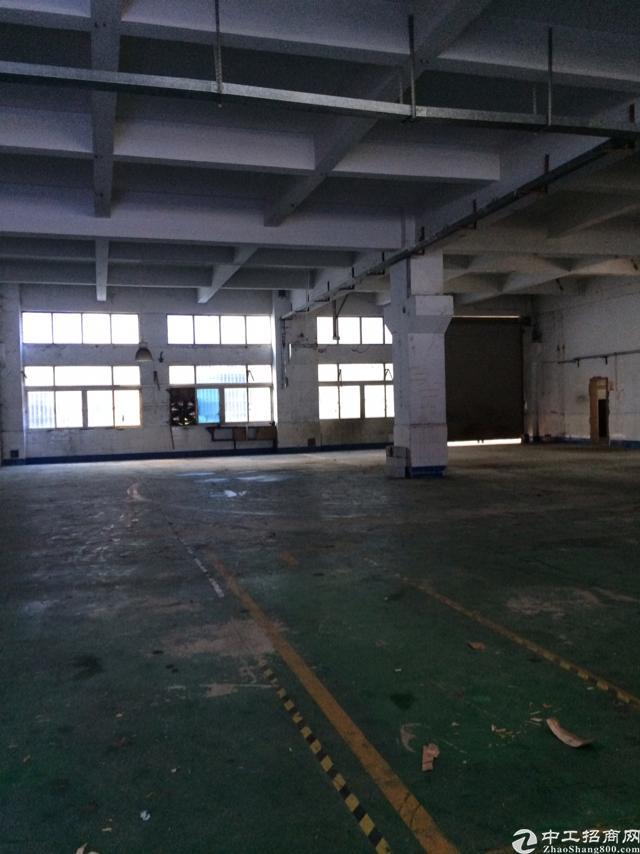 横岗龙岗大道边新出一楼6米高920平米出租