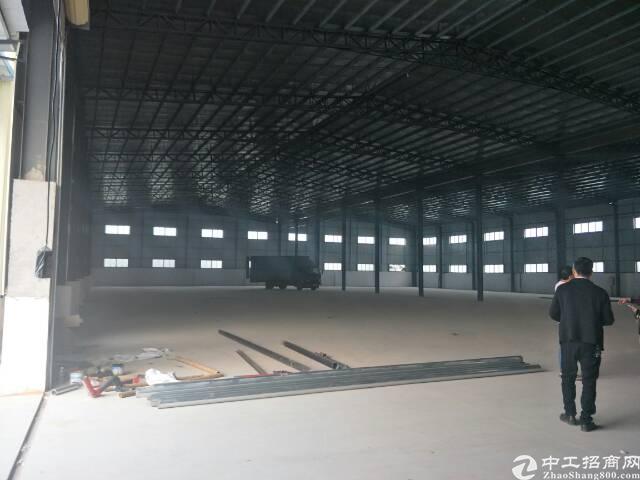 望牛墩全新钢构厂房5700平方招租,可分租