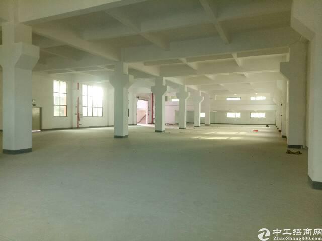 龙岗坪地独院17000平方全新原房东出租
