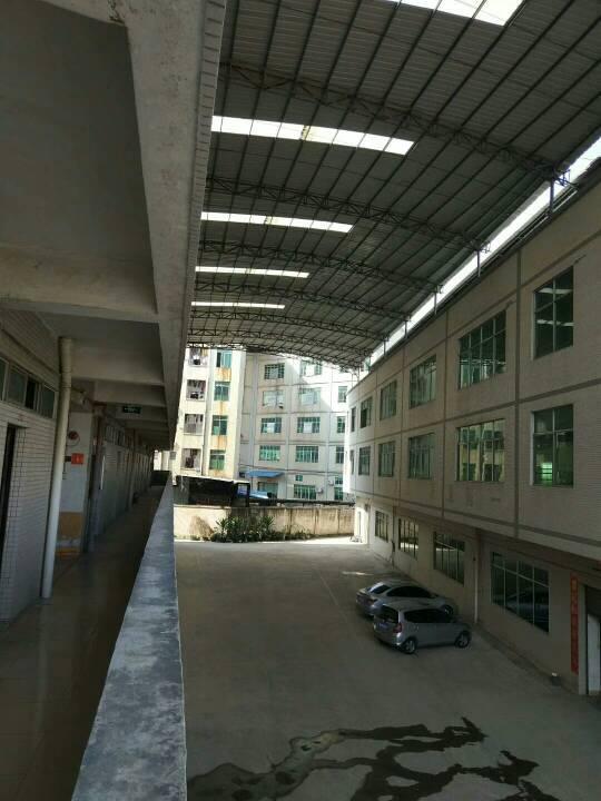 广州新塘经典小独院-图4