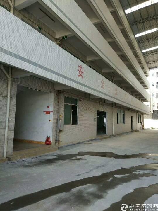 广州新塘经典小独院-图5