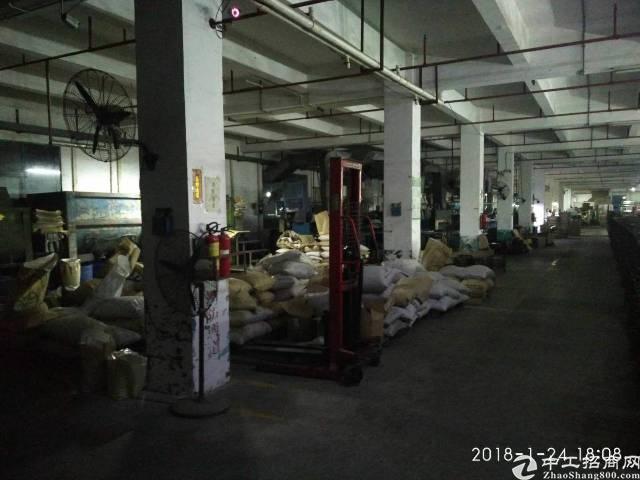 厚街镇三屯村,标准厂房一楼实际面积租