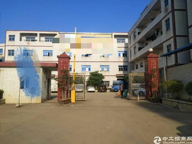 油甘埔原房东标准厂房高度5米一楼1500㎡