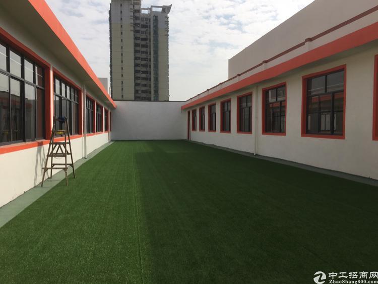 松岗镇中心200平方写字楼招租