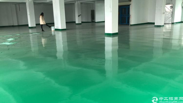 宝屯村独栋三层原房东厂房2400平方米带精装修车间办公室-图2