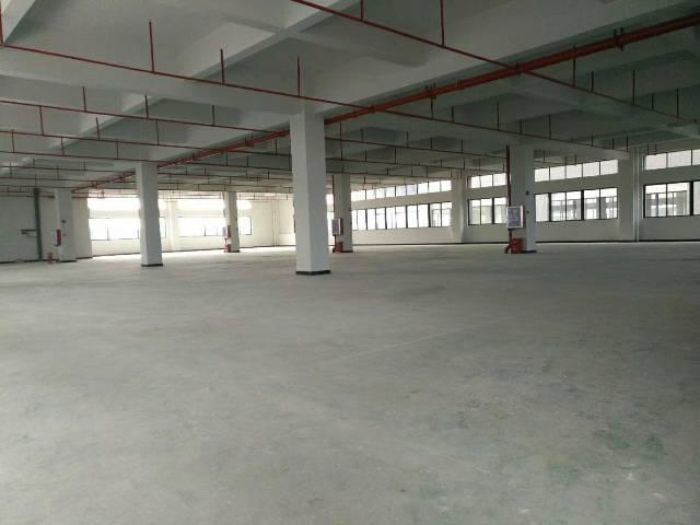 高埗镇独院标准厂房分租3楼1600平租金11带电梯
