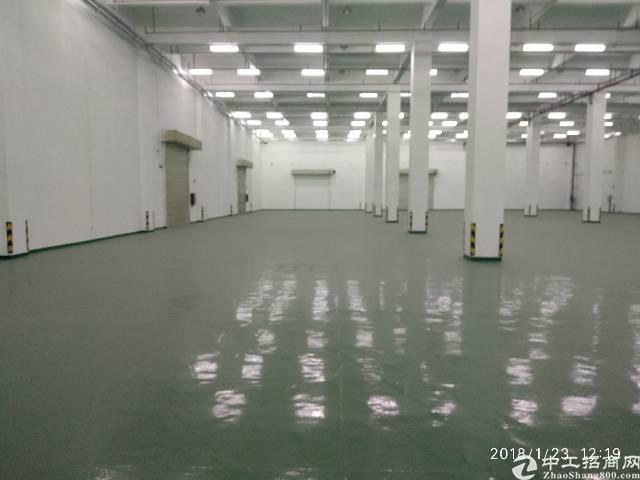 凤岗雁田稀有甲级消防层高10米仓库